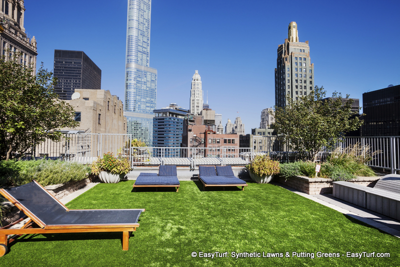 Chicago Green Roofs   Resilience City Daniel Bi. Pic