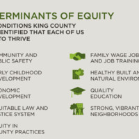 equity determinates from King County.jpg